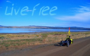1280 Live Free