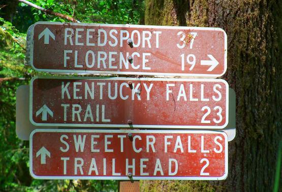 sweet creek 16