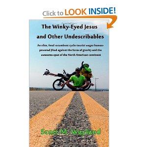Winky Eyed Jesus book