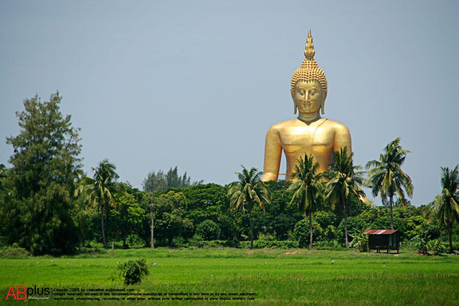 Steven Telck Thailand 04