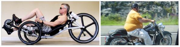 William Cortvriendt rider profiles
