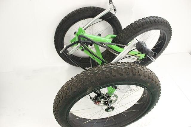 Hartlander Fat Trike 2