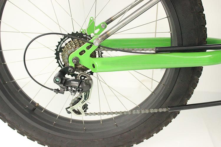 Hartlander Fat Trike 3
