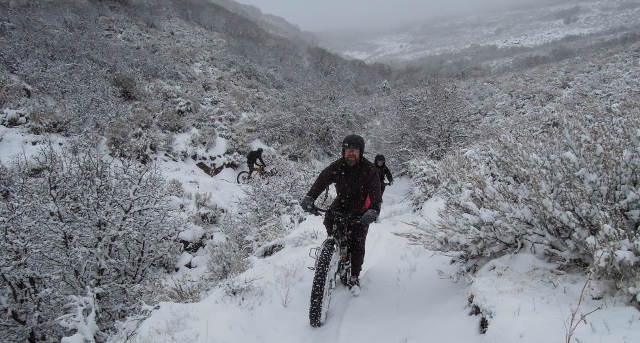 Fat bikes in snow