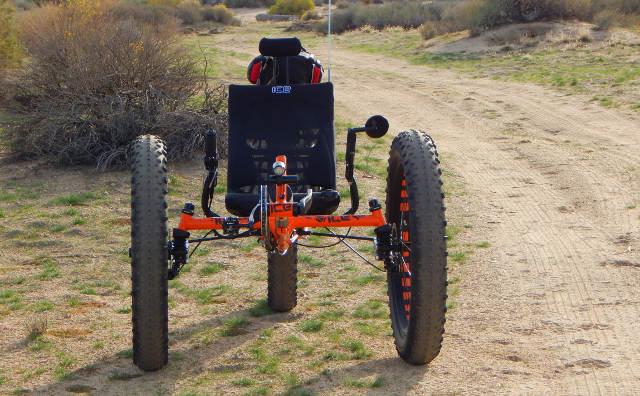 Mojave Bigfoot 02