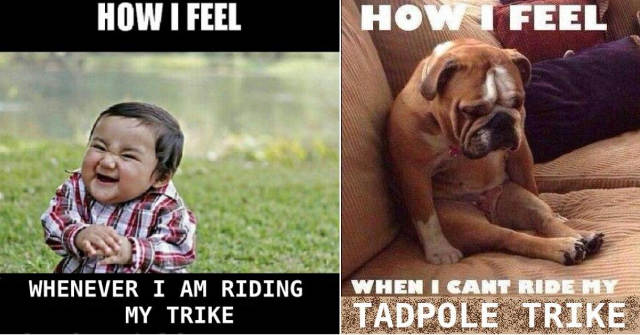 Trike Feelings