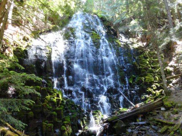 Mt Hood Wilderness 3