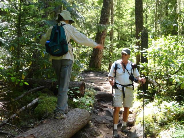 Mt Hood Wilderness 4