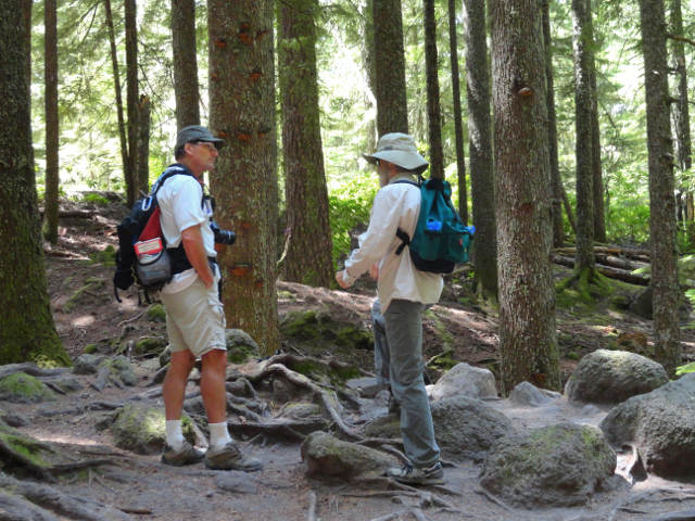 Mt Hood Wilderness 5