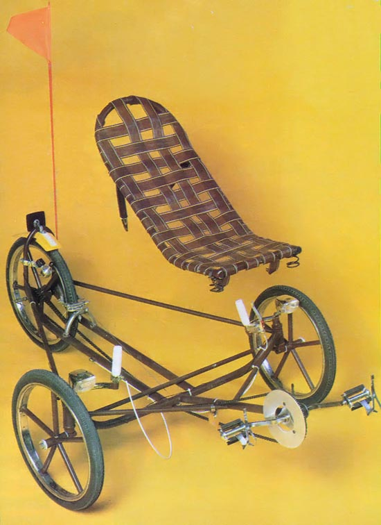 Mother Earth New Recumbent Trike 01