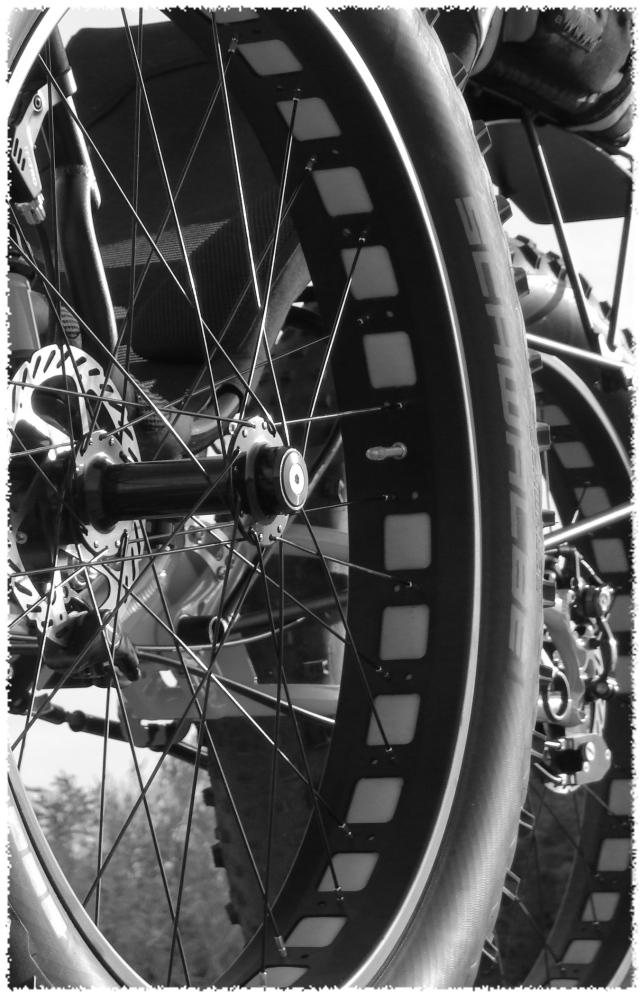 bigfoot-wheels