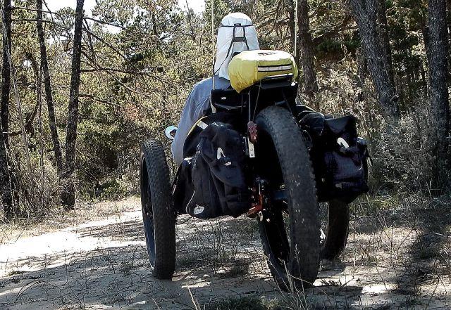 bush-triker-in-woods